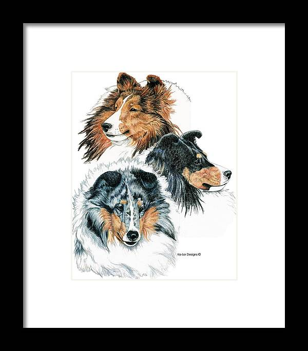 Shetland Sheepdog Framed Print featuring the drawing Shetland Sheepdogs by Kathleen Sepulveda