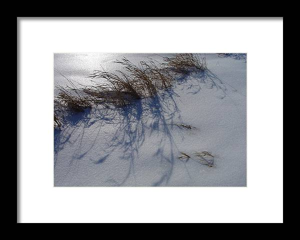 Snow Framed Print featuring the photograph Shimmering Snow Can Only Mean Cold by Terrance DePietro