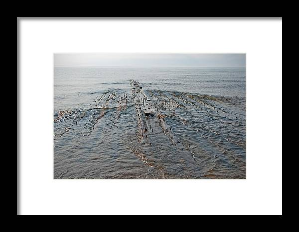 Shipwreck Framed Print featuring the photograph Shipwreck by David Arment