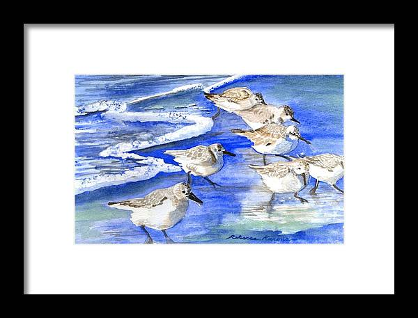 Plovers Framed Print featuring the painting Shore Birds by Rebecca Marona