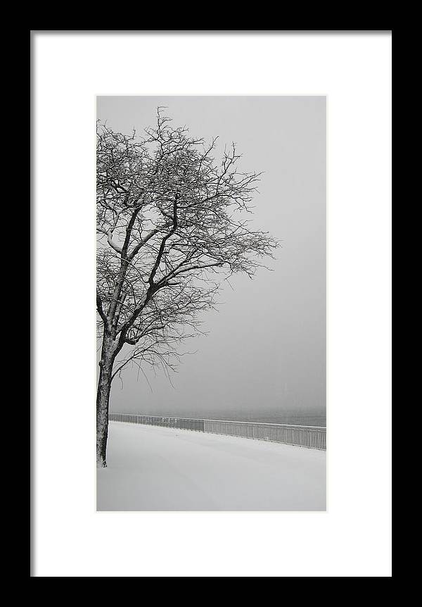 Winter Framed Print featuring the photograph Shore Road Winter 2010 by Joshua Ackerman