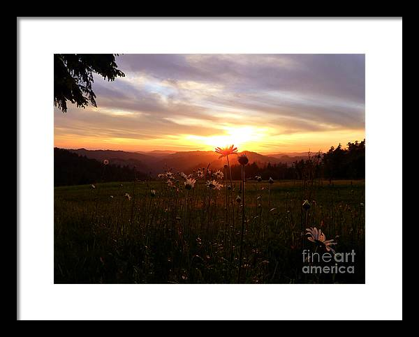 Nature Framed Print featuring the photograph Shouting With Joy by JoAnn SkyWatcher