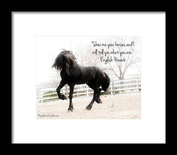 Show Me Your Horse Framed Print by Royal Grove Fine Art