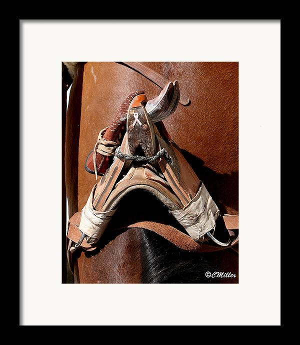 Rodeo Framed Print featuring the photograph Showing Support For Pink.. by Carol Miller