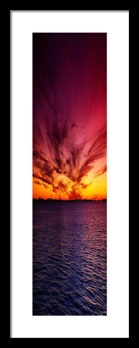 Nature Framed Print featuring the photograph Showoff II by Florene Welebny