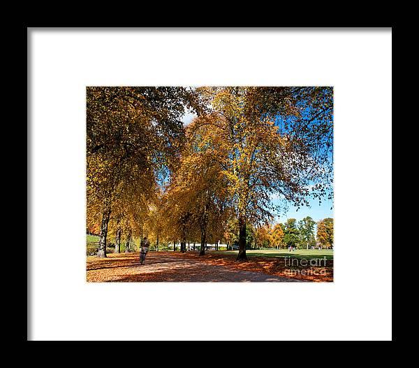 Park Framed Print featuring the photograph Shrewsbury Autmn Park by Chris Smith