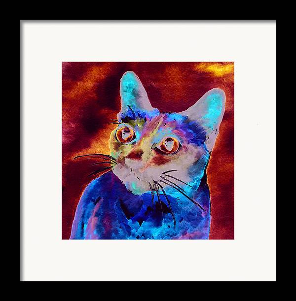 Siamese Cat Framed Print featuring the painting Siamese Cat by Christy Freeman