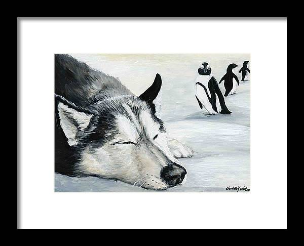 Siberian Huskey Framed Print featuring the painting Siberian Huskey by Charlotte Yealey