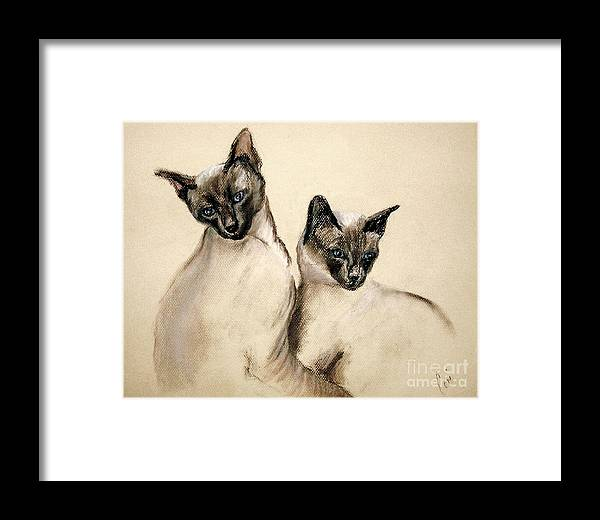 Cat Framed Print featuring the drawing Sibling Love by Cori Solomon
