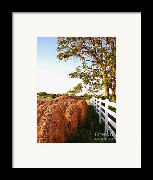 Landscape Framed Print featuring the photograph Side-by-side by Todd A Blanchard