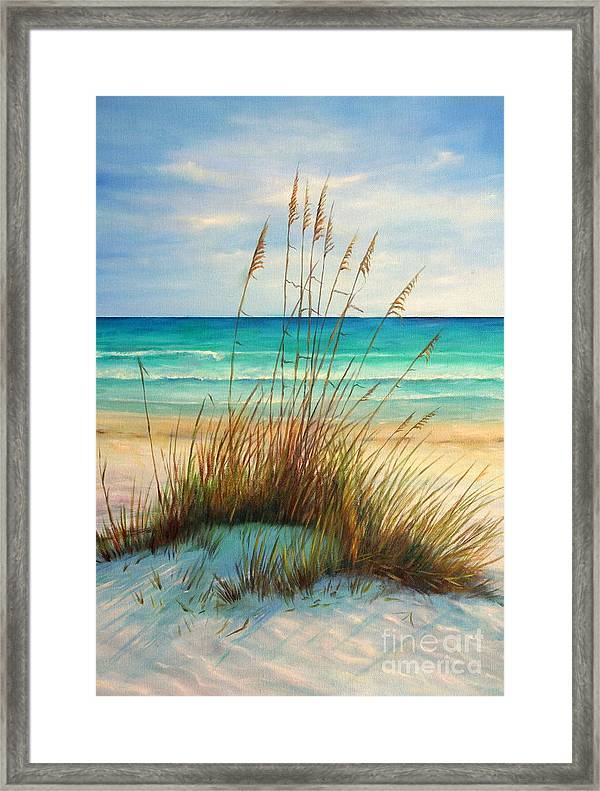 Siesta Key Beach Dunes Framed Print By Gabriela Valencia