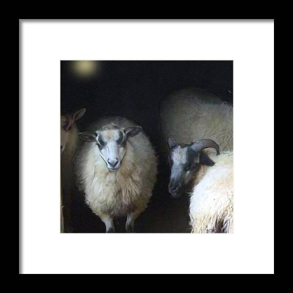 Lamb Framed Print featuring the photograph Silence Of The Sheep by Ann Tracy