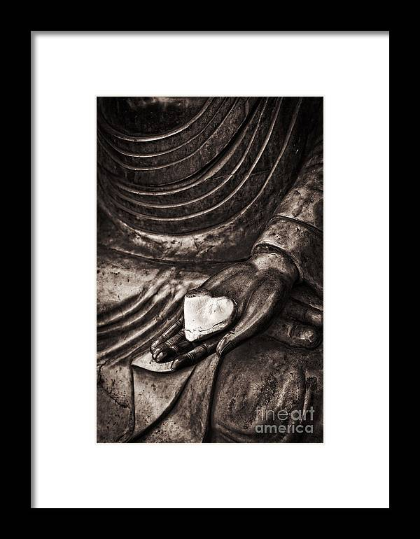 Buddha Framed Print featuring the photograph Silent Heart by Tim Gainey