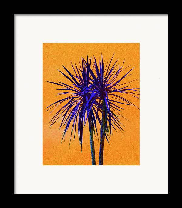 Palm Framed Print featuring the photograph Silhouette On Orange by Margaret Saheed