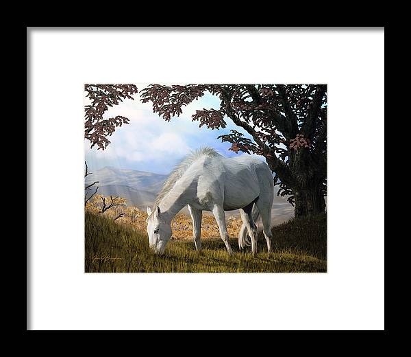 Animals; Horse; Horses; Landscape; Nature; Grass; Tree; Trees; Trees Rocks; Leaves; Framed Print featuring the painting Silver And Gold by Jan Baughman