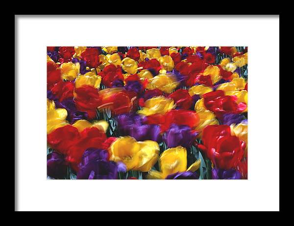 Flower Framed Print featuring the photograph Singing Tulips L062 by Yoshiki Nakamura