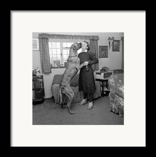 Adult Framed Print featuring the photograph Sit! by John Drysdale