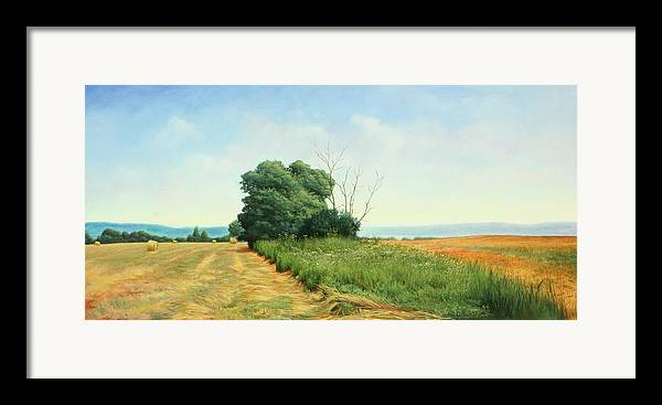 Landscape Framed Print featuring the painting Skaneatles Field by Stephen Bluto