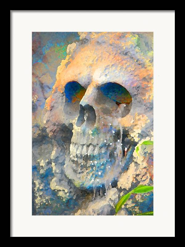 Halloween Framed Print featuring the photograph Skull by Danielle Stephenson