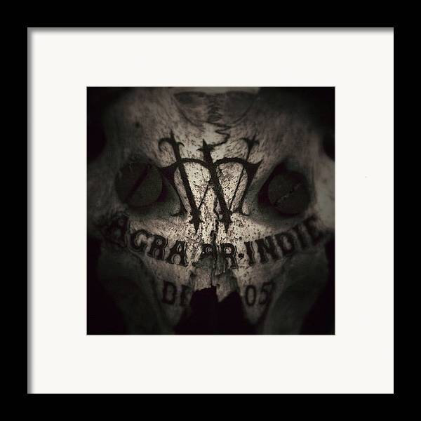 Sevendead Framed Print featuring the photograph Skull by Dave Edens