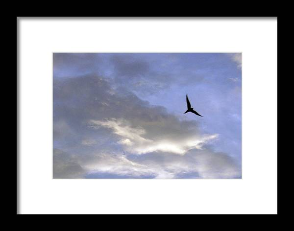 Cloud Framed Print featuring the photograph Sky16 by Mikael Gambitt