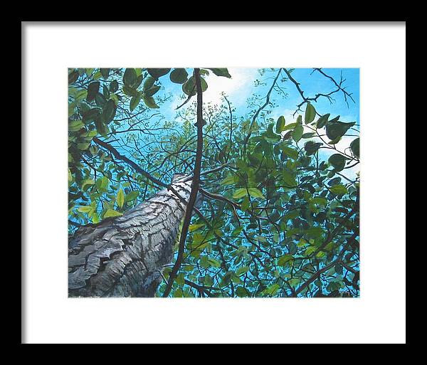 Landscape Framed Print featuring the painting Skyward by William Brody