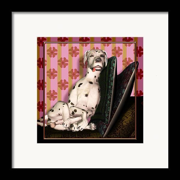 Dalmatian Framed Print featuring the digital art Sleeping IIi by Nik Helbig