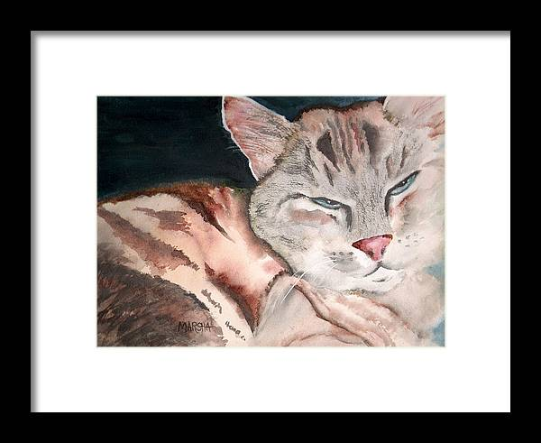 Animal Cat Painting Watercolor Framed Print featuring the painting Sleepy Cat by Marsha Woods