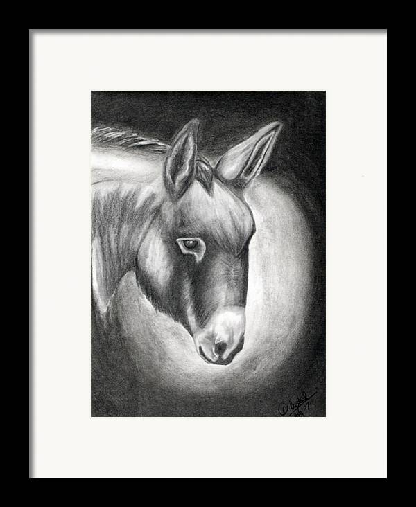 Portrait Framed Print featuring the drawing Slick by Crystal Suppes