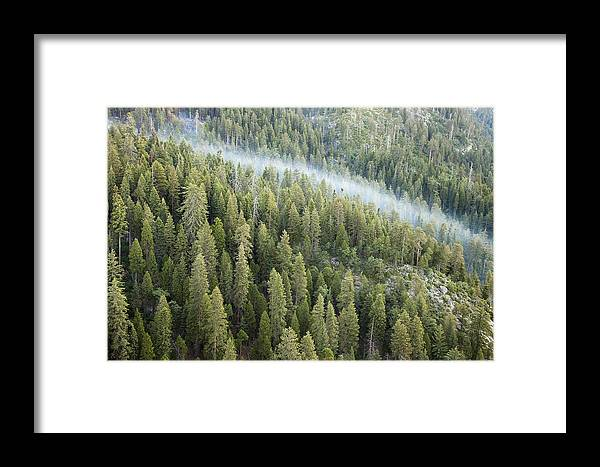 Sequoia National Park Framed Print featuring the photograph Smoke In Forest by Rick Pham