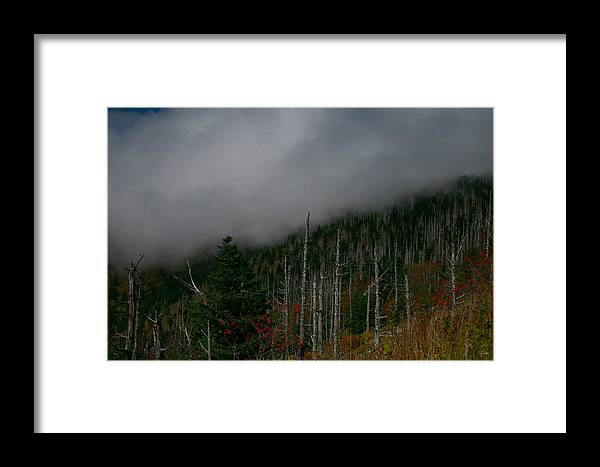 Smokey Mountains Framed Print featuring the photograph Smokey Mountains by James Jones