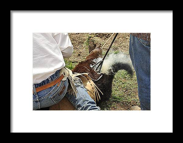 Branding Cattle Framed Print featuring the photograph Smokin' Hot by Diana Cannon
