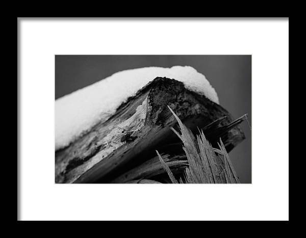 Snow Framed Print featuring the photograph Snow Blanket by Shelley Smith