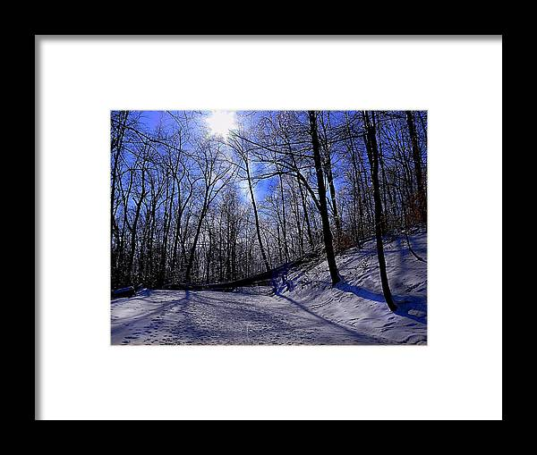 Snow Framed Print featuring the photograph Snow Covered Path by Kevin Jackson