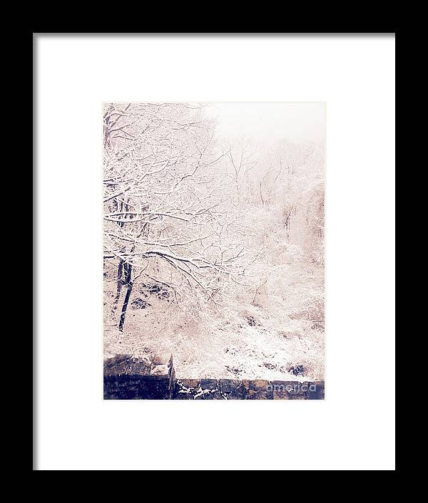 Snow Window View Tree Trees Black And White Chateau Castle Snowing Framed Print featuring the photograph Snow Day by Elena Fattakova