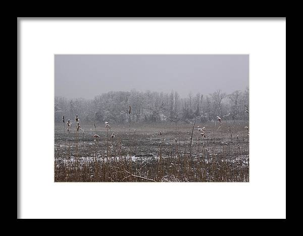 Landscape Framed Print featuring the photograph Snow Falling On Marsh by Daniel Childs