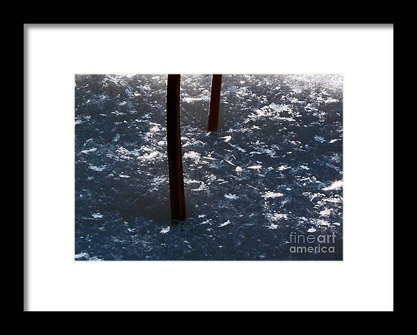 Snow Flakes Framed Print featuring the photograph Snow Flakes by Scott Heister
