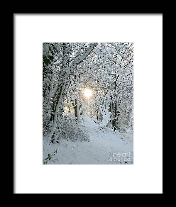Snow Framed Print featuring the photograph Snow Light by Maria Joy