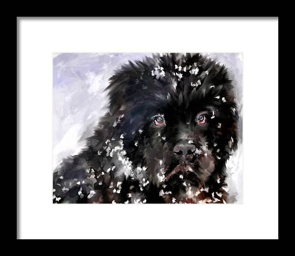 Newfoundland Framed Print featuring the painting Snow Play by Jai Johnson