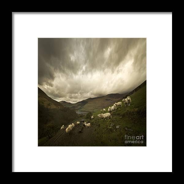 Mach Loop Framed Print featuring the photograph Snowdonia by Angel Ciesniarska