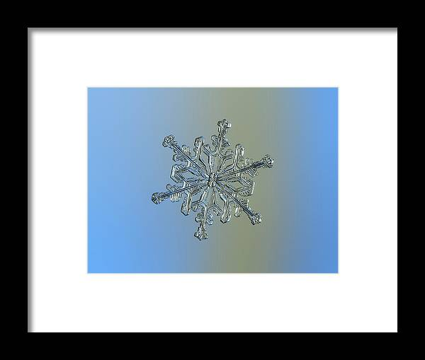 Snowflake Framed Print featuring the photograph Snowflake Macro Photo - 13 February 2017 - 2 by Alexey Kljatov