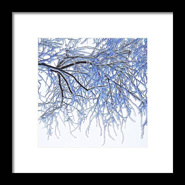 Painting Framed Print featuring the painting Snowy Branches by Mari Biro