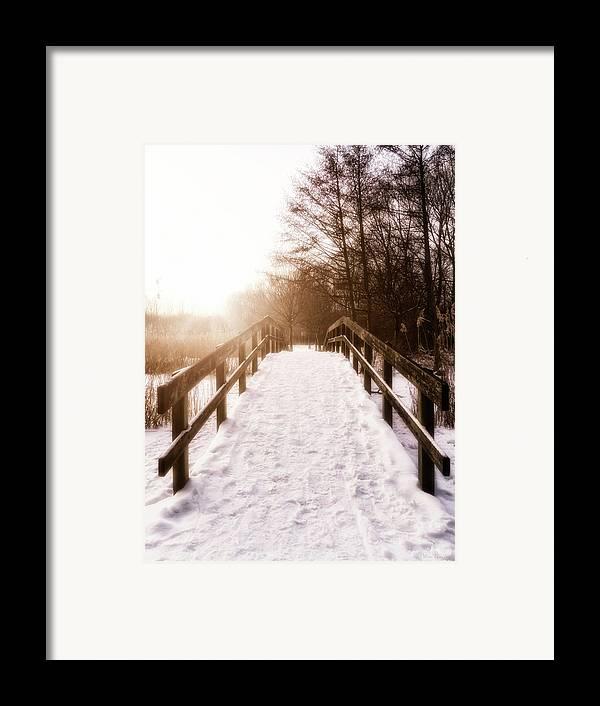 Bridge Framed Print featuring the photograph Snowy Bridge by Wim Lanclus