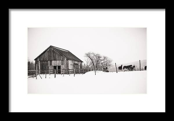 Winter Framed Print featuring the photograph Snowy Day At The Farm by Edward Myers