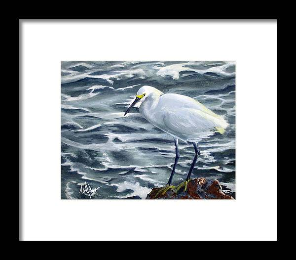 Egret Framed Print featuring the painting Snowy Egret On Jetty Rock by Adam Johnson