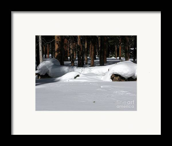 Snow Framed Print featuring the photograph Snowy Log by PJ Cloud