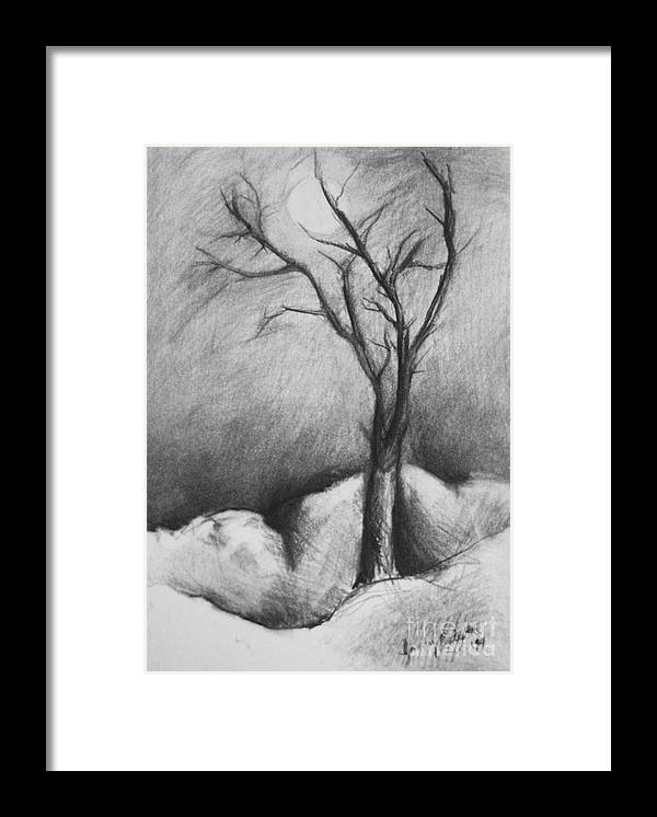 Moonlight Framed Print featuring the drawing Snowy Moonlight by Jamey Balester