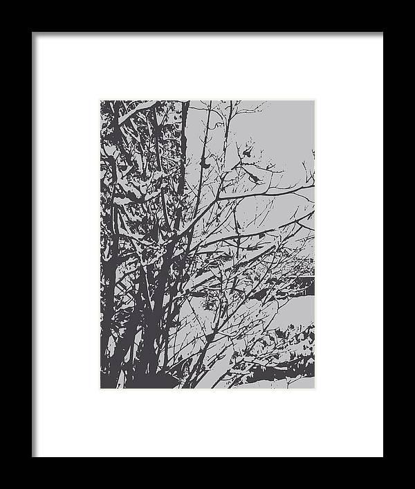 Trees Framed Print featuring the photograph Snowy Trees by Rachel Vdolek
