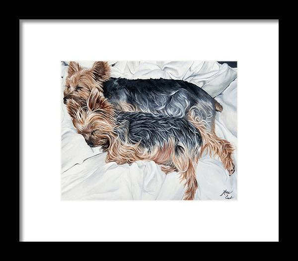Cute Framed Print featuring the painting Snuggling Yorkies by Alexandra Cech