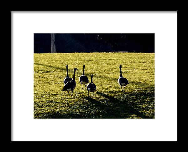 68steelphotos Framed Print featuring the photograph So Long by Scott Bryan